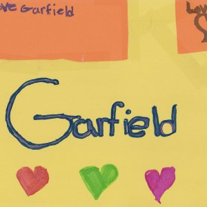 Ranea_8_garfield_community
